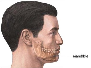 mens chin implant